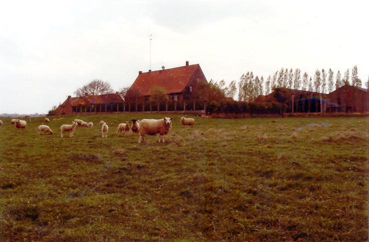 La ferme de Watou : l'ensemble des bâtiments du refuge