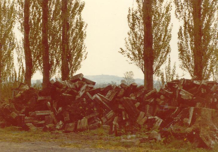 Depuis la ferme de Watou, vue sur le Mont des Cats