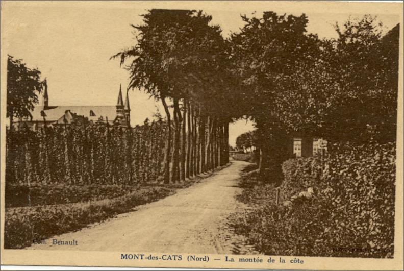 Houblonnière plus proche de l'Abbaye